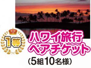 1等ハワイ旅行ペアチケット